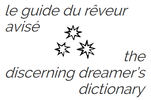 the discerning dreamer's dictionary